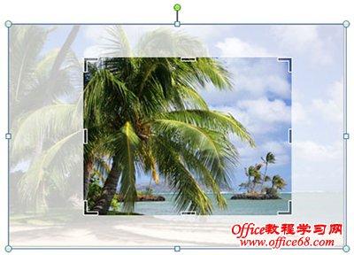 使用改进的图片编辑工具轻松替换图像,同时保留页面布局