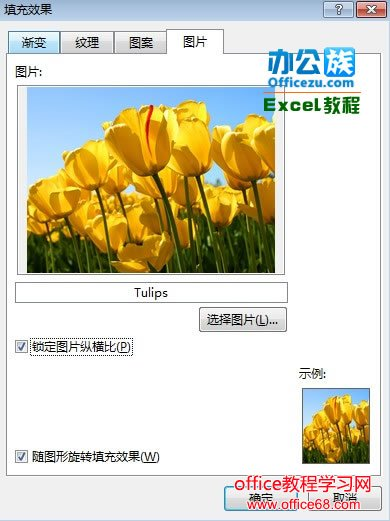 Excel2013中如何快速插入图片批注5