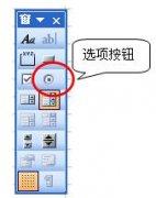 Excel窗体控件【选项按钮】的运用实例教程